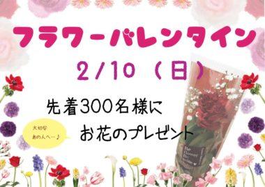 フラワーバレンタイン1200×718バナー