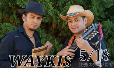 WAYKIS1200×718