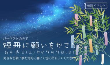 七夕1200718