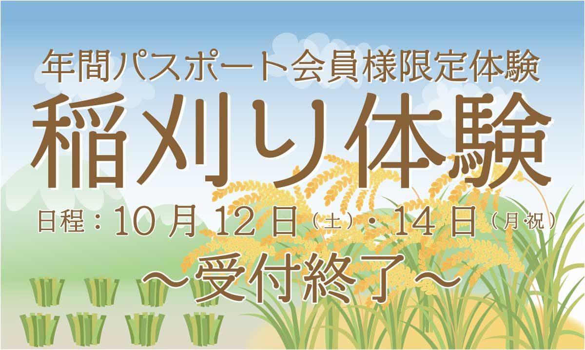 稲刈り1200②