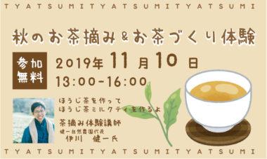 秋のお茶1200
