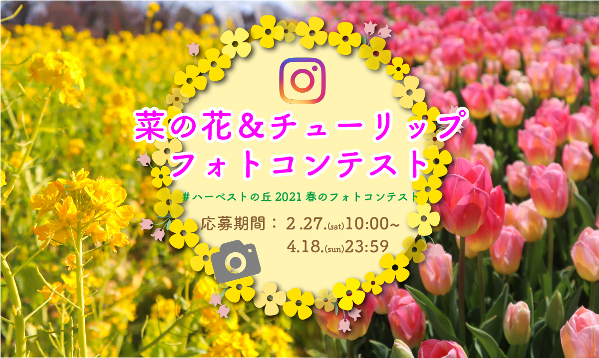春のフォトコンテスト 選考中   イベント情報   堺・緑のミュージアム ...